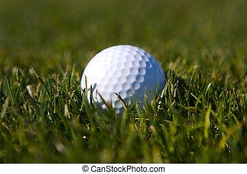 corte, pelota de golf, primero