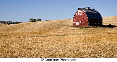 corte, sólo, granja, paja, cosechado, granero rojo