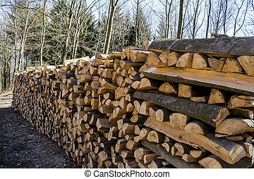 corte, troncos árvore