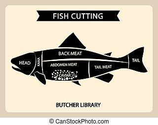 corte, vetorial, cortes, vindima, peixe, guia, mapa, carne, diagrama