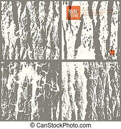 corteza, conjunto, árbol, textura