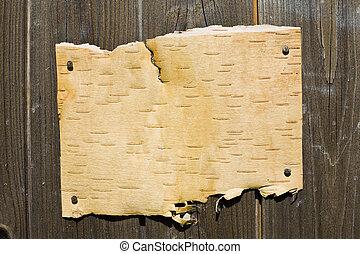 corteza, en, de madera, plano de fondo