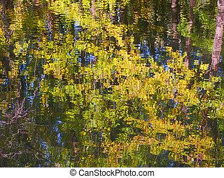 corteza, río, reflexión, wisconsin