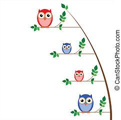 coruja, árvore, família