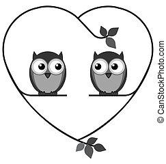 coruja, amantes