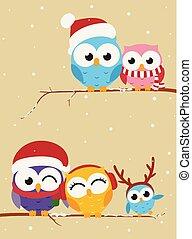 coruja, bandeira, ramo, natal familiar