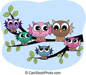 coruja, coloridos, família