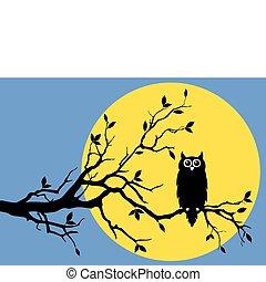 coruja, com, lua, vetorial