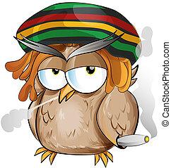 coruja, jamaicano, caricatura