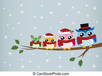 coruja, natal, família, saudação