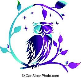 coruja, noturna