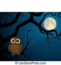 coruja, pequeno, cheio, ramo, lua