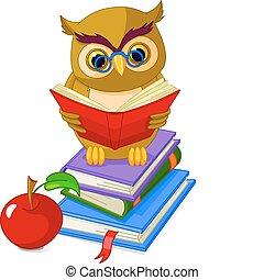 coruja, pilha, livro, sábio, sentando