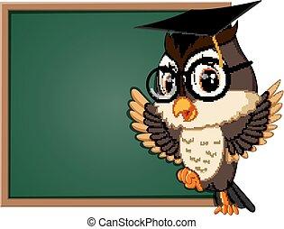 coruja, professor, quadro-negro