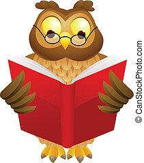 coruja, sábio, caricatura