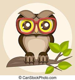 coruja, sentando, ilustração, engraçado, branch., óculos