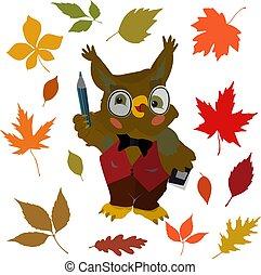coruja, setembro, professor, personagem, caricatura, outono, fundo, branca, folhas