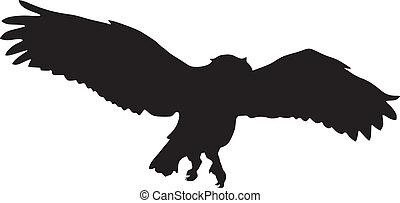 coruja, voando, silueta