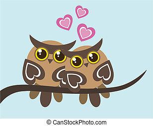 corujas, amor