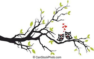 corujas, apaixonadas, ligado, árvore, vetorial