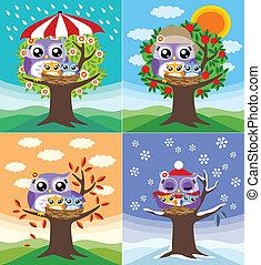 corujas, em, quatro estações