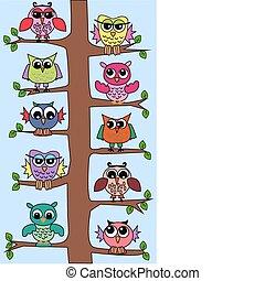corujas, em, um, árvore