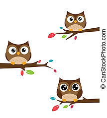 corujas, filial árvore, família, sentado