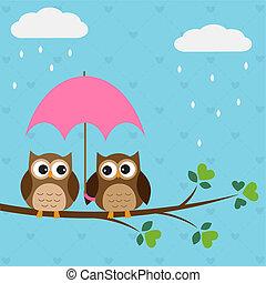 corujas, par, guarda-chuva, sob