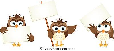corujas, três, signboards