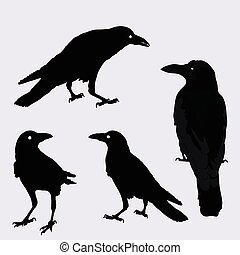 corvos, diferente, vetorial, silueta, positions.