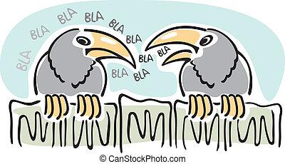 corvos, gossip., falando, sentando, dois, fence., enquanto