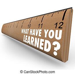 cosa, possedere, lei, erudito, righello, recap, feedback, revisione
