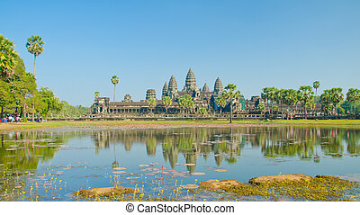 cosechar, cambodia., siem, templo, wat, angkor