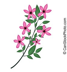cosmos branch leaves image