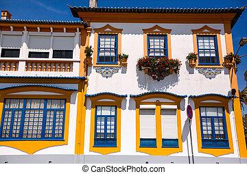 costa, 家, -, portugal., nova, ファサド, aveiro