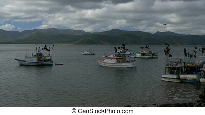 costa, baie, bateaux, version, rica, pêcheur, indigène