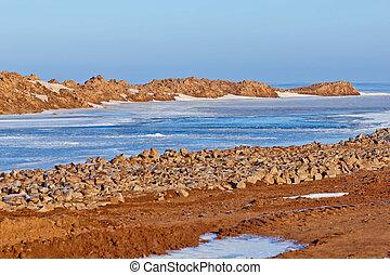 costa, de, antártica, oceano ártico, água, gelo