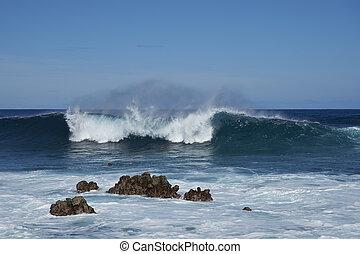 costa, de, isla de pascua