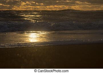 costa, espuma, raio sol, onda