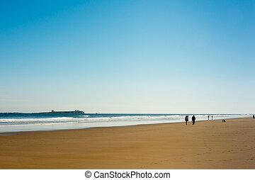 costa, inglaterra, farne, caminata, plano de fondo, islas, ...