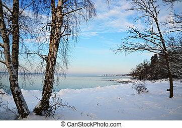 costa, inverno, vista