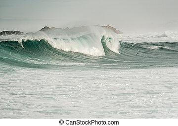 costa, oceânicos, pacífico, eua, onda