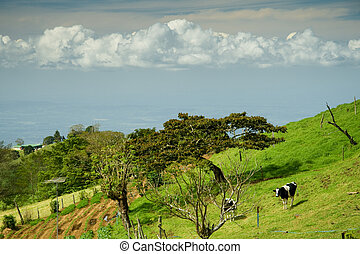 Costa Rica Country Side - Landscape of the country side of...