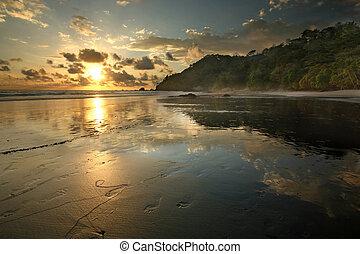 Costa Rica Jungle Beach - A jungle rain forest beach in...