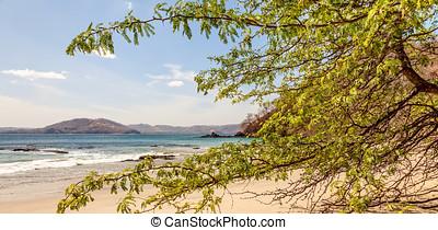Costa Rica - Scenic view of the beach along the Golfo de...