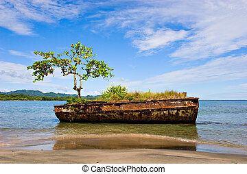 Costa Rican Landscape - An old rusty vessel with a tree on a...