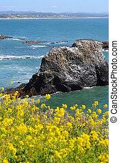 Costal waters in Newport, Oregon - Costal waters near the...