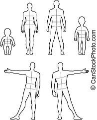 costas, comprimento, cheio, frente, pessoas