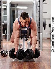 costas, músculos, malhação