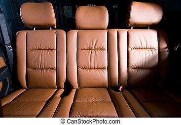 costas, passageiro, assentos, em, modernos, confortável, car